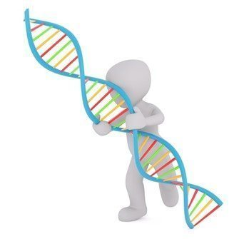 Genetics and Reproductive Responsibility